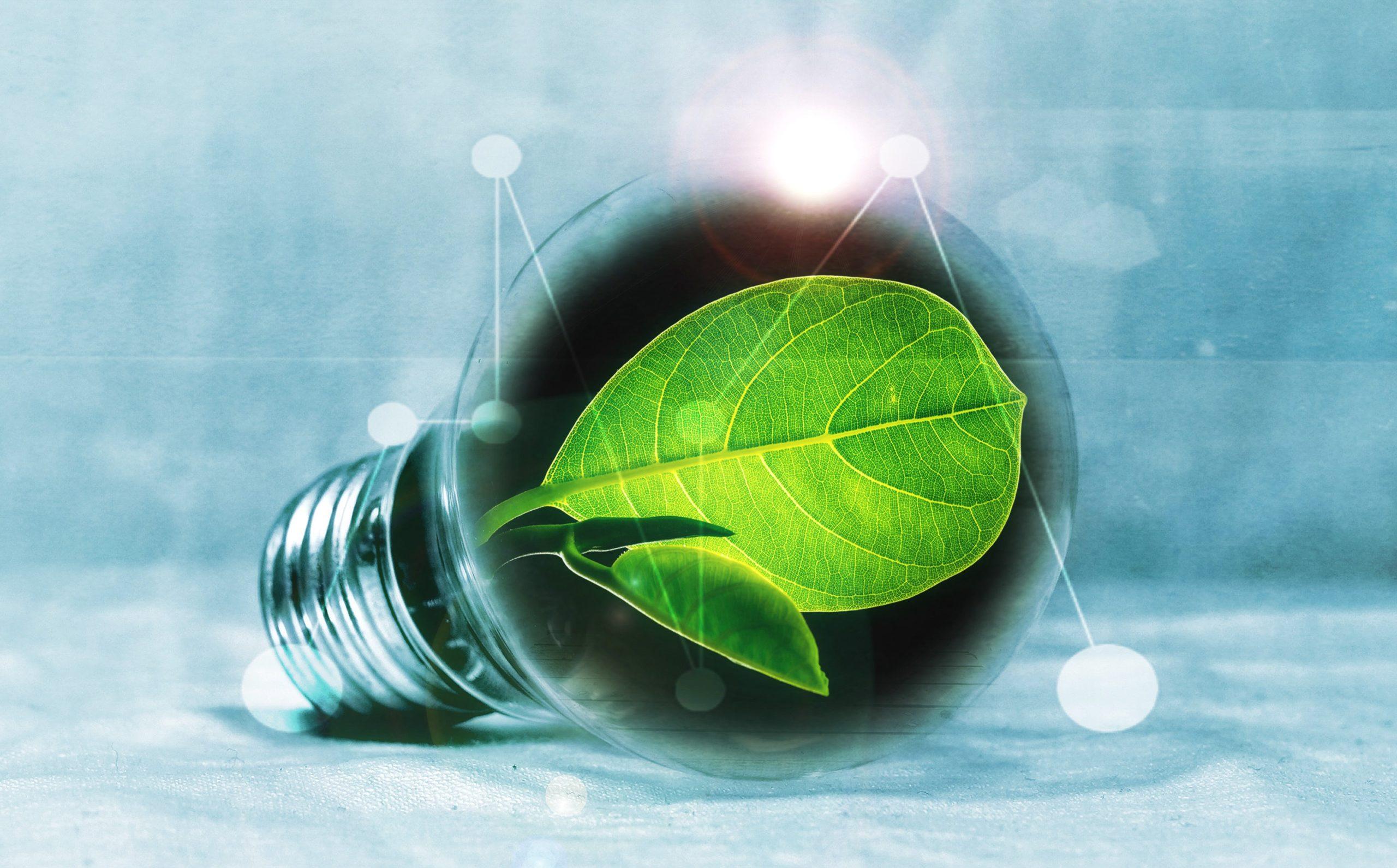 neubauten Nachhaltigkeit